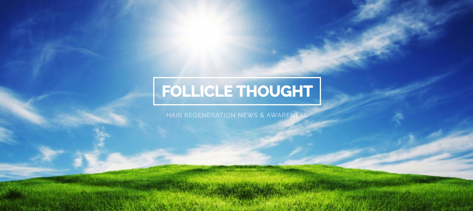 Follicle Thought